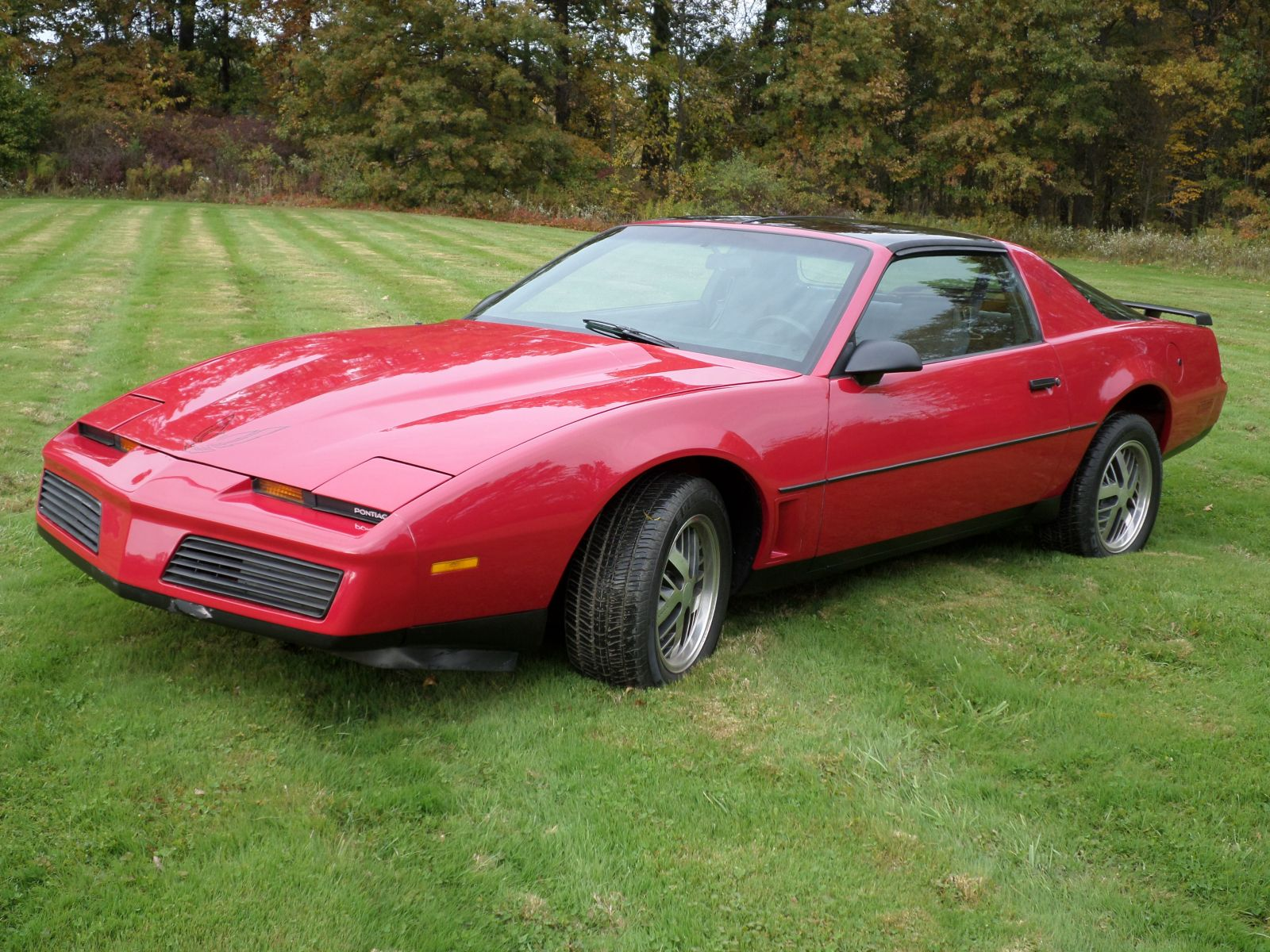 1983 trans am 3 cleveland power performance
